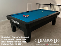 13DIAMOND 8' PRO-AM PRC BLACK - MUSTAFA FROM FLORIDA - INSTALLED FEB 16, 2021